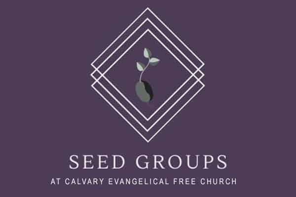Seed Groups