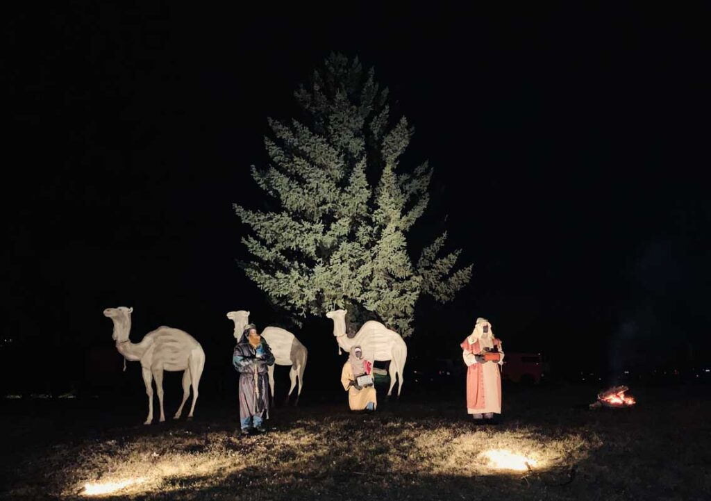 drive thru nativity wiseman camels