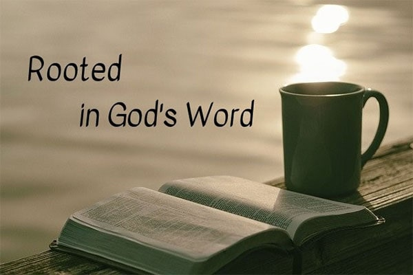 Rooted in God's Word