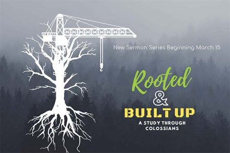 Rooted and Built-up